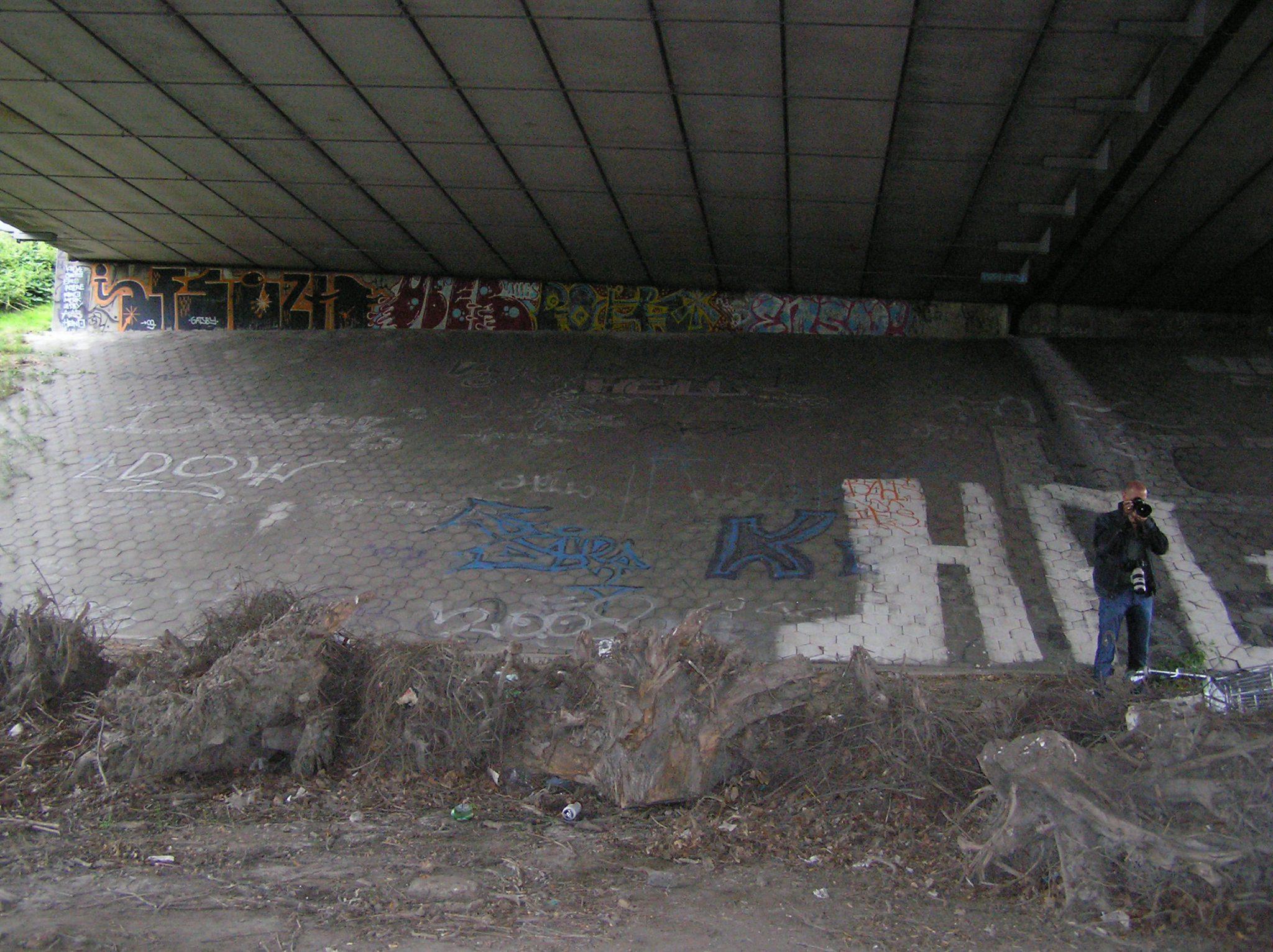 p8130008